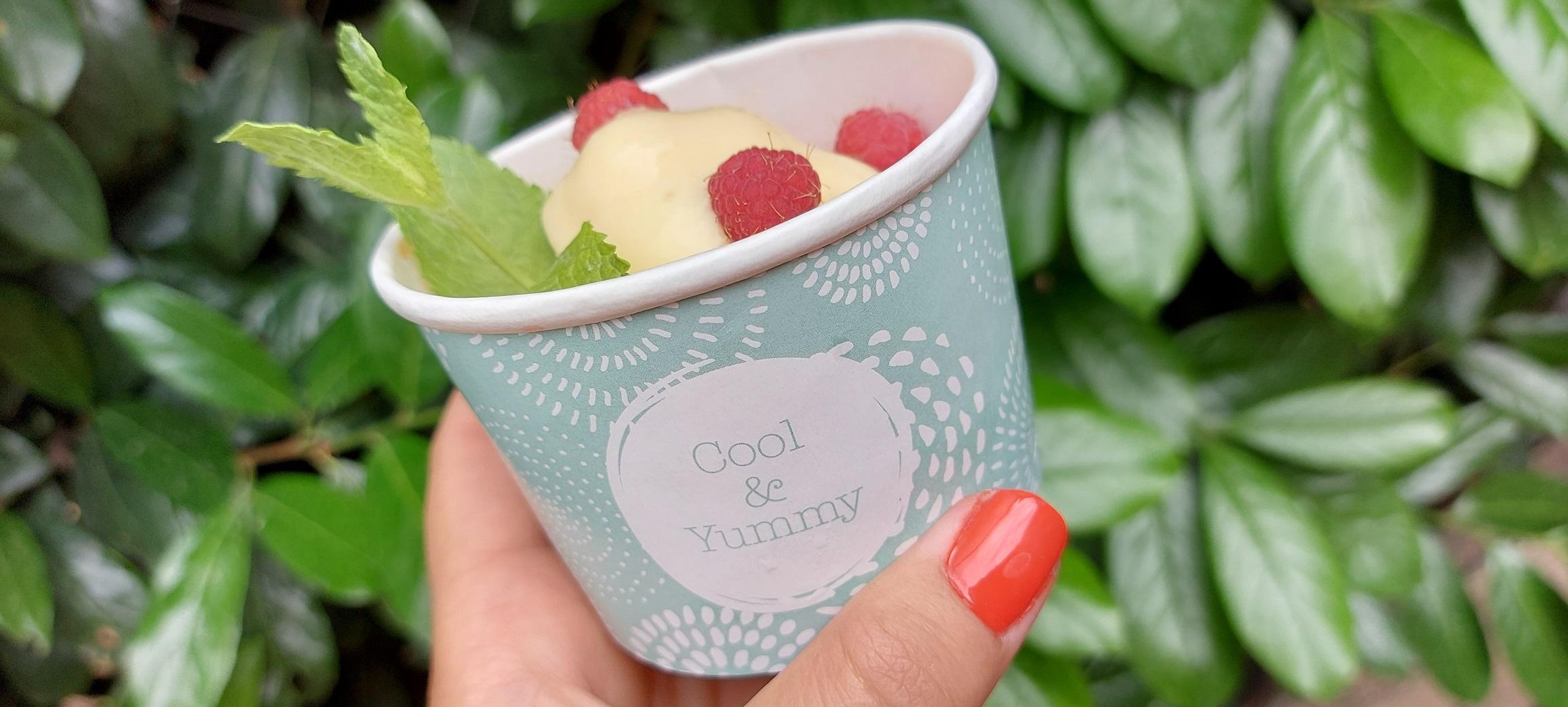 Cukormentes vanília fagyi